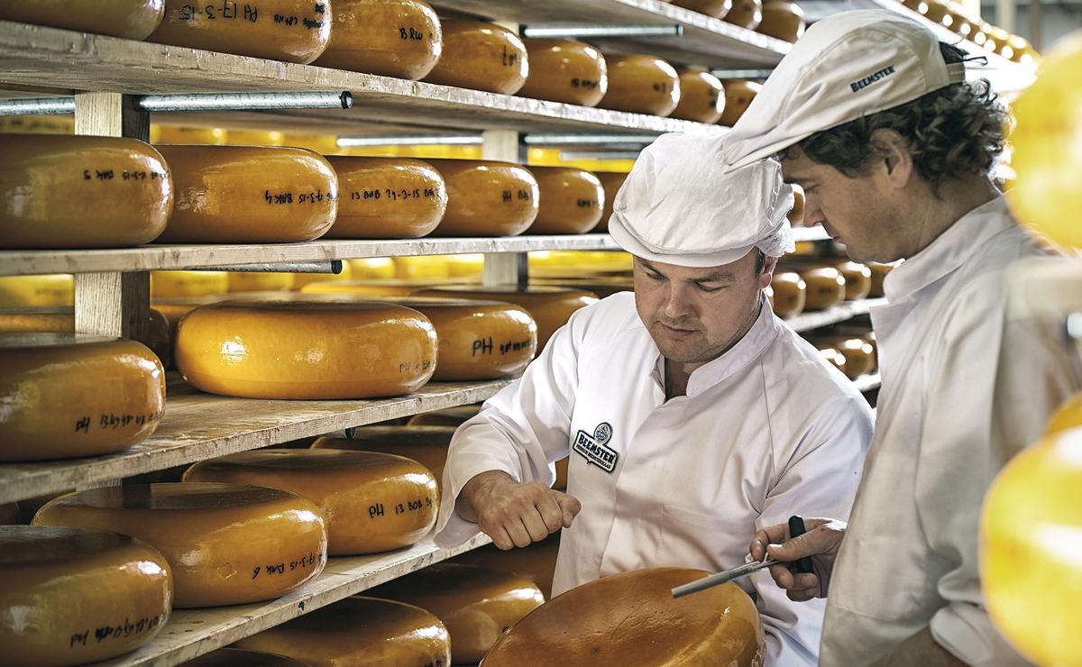 Beemster – kvalitetan holandski sir od mleka srećnih krava