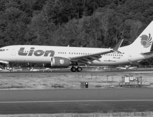 Srušio se Boeing 737 MAX 8 indonežanske kompanije Lion Air